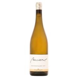 Bauer - Sauvignon Blanc 2017