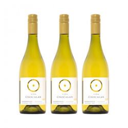 Pachet Chardonnay Chile