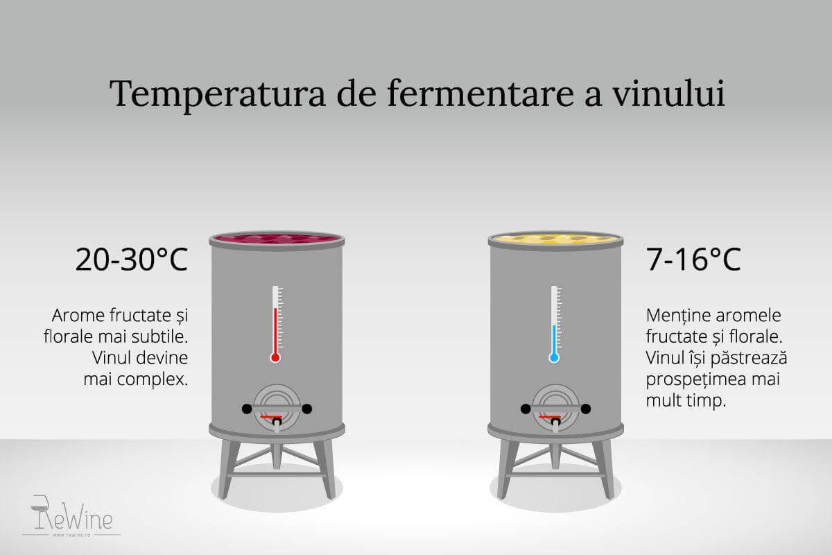 Temperatura de fermentare a vinului