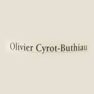 DOMAINE CYROT BUTHIAU