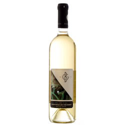 Wine Princess - Balla Geza - Mustoasa de Maderat 2014